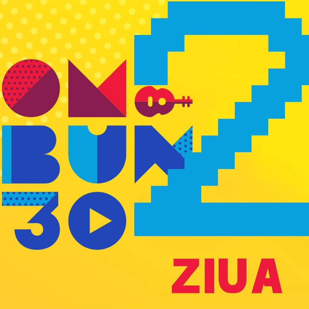 Festival OM BUN 30 Bilet Ziua 2