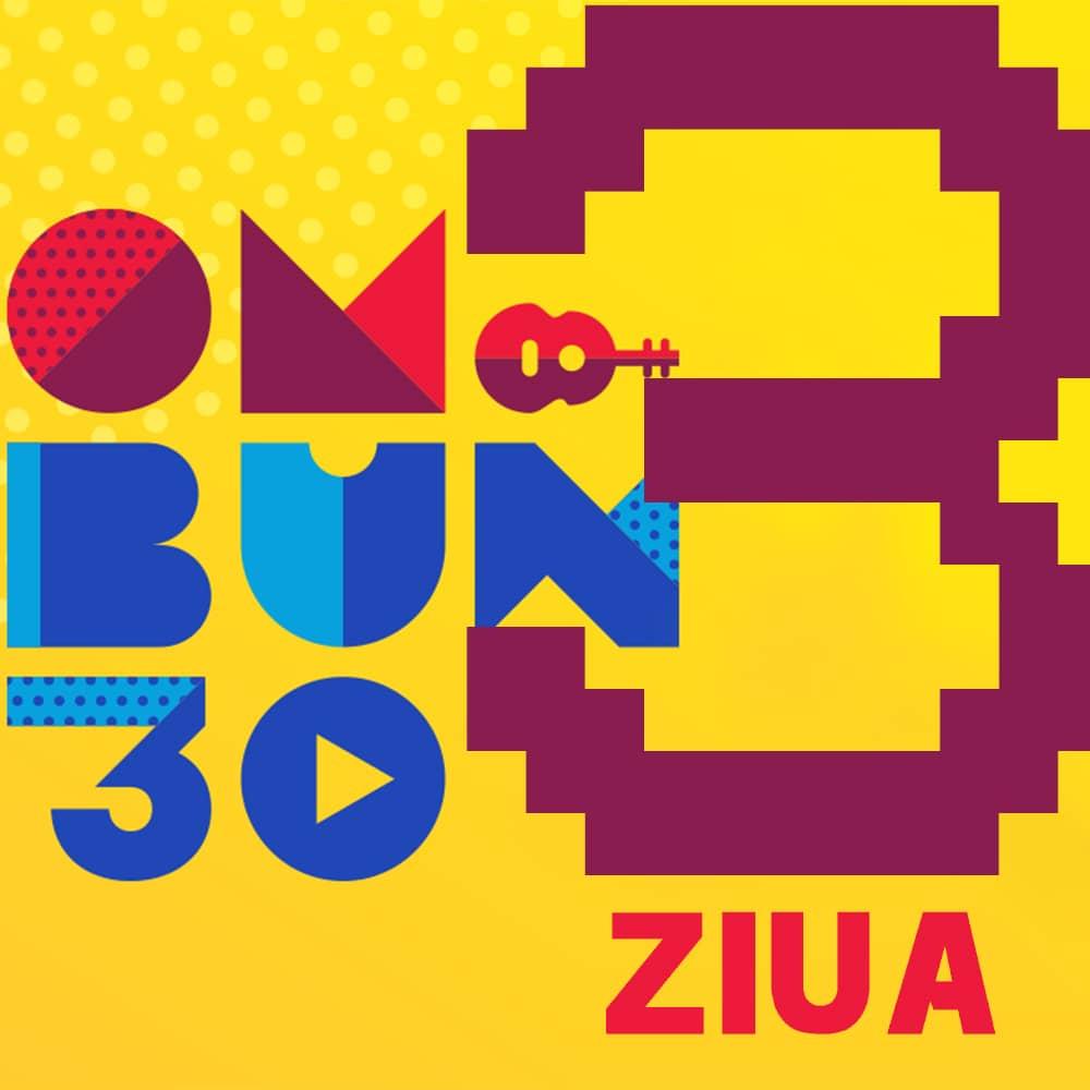 Festival OM BUN 30 Bilet Ziua 3